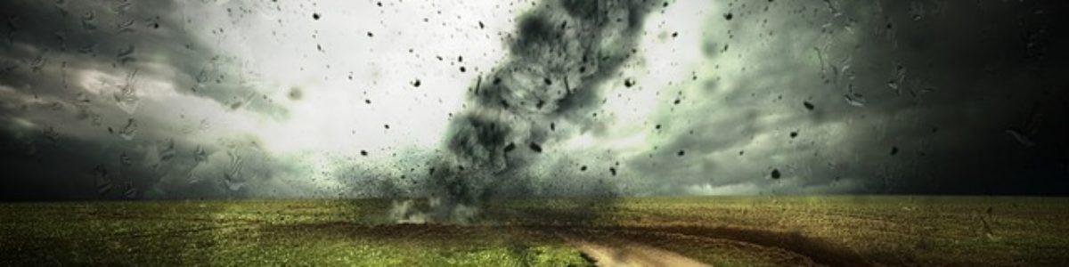Naukowcy z UW do środowiska akademickiego: uznajmy kryzys klimatyczny za kwestię priorytetową